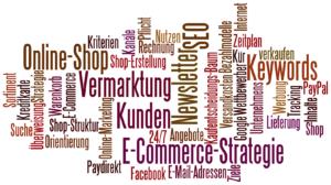 Stichworte für die E-Commerce Strategie / Online-Shop Strategie von Thomas Kison: Suche nach dem idealen Anbieter, Erstellung des Shop-Layouts, Seiten- und Menüstruktur, Keywords, Prüfung von Gütesiegeln, Bezahlmethoden und Versand-Dienstleistern, ...